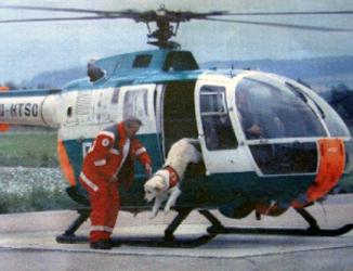Rettungshund springt aus Hubschrauber.