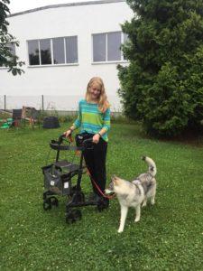 Mädchen mit Hund an lockerer Leine trotz Gehwagen